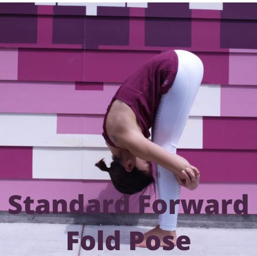 standard forward fold pose